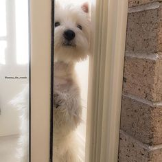 #peekaboo mum I found you!
