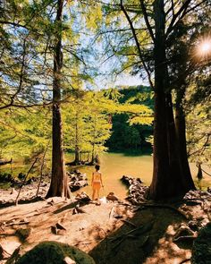 Austin ranks among the fittest cities in America and we're so lucky to have so many hiking trails to get outside and exercise! Here's the guide on the best Austin hiking trails with hours, costs, tips, and any new restrictions. #exploreaustin #travelaustin #austinhiking Bike Trails, Hiking Trails, Hiking In Austin Texas, Mckinney Falls State Park, Stuff To Do, Things To Do, Enchanted Rock, Lake Park, Swimming Holes