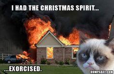 grumpy cat, i had the christmas spirit exorcised, funny grumpy cat
