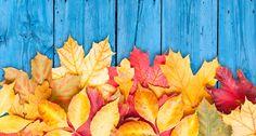 """Sarete """"yankee"""" per un giorno se seguite le nostre indicazioni per festeggiare il Giorno del Ringraziamento! #thanksgivingday"""