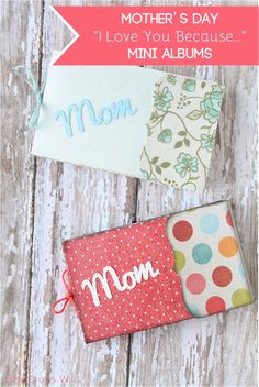 Mother's Day I Love You Because Mini Album Gift