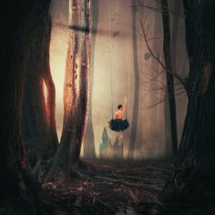 Photograph Sweet swing forest by Caras Ionut on 500px