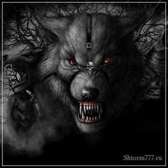 The Deadly Black Wolf Who Attacks Clump Aztecas Art, Werewolf Art, Legends And Myths, Vampires And Werewolves, Big Bad Wolf, Creatures Of The Night, Wolf Tattoos, Mythical Creatures, Dark Art