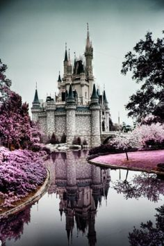 castle surrounded by purple flowers