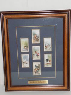Vintage Player's Cigarettes Game Birds & Wild Fowl Framed Tobacco Cigarette Cards by OldVintageRetroStore on Etsy