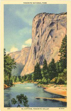 Yosemite National Park El Capitan Yosemite Valley California Vintage Postcard (unused)