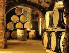 El concurso enológico Concours Mondial de Bruxelles, ha situado a 7 vinos del Bierzo y un Tierra de León en el cuadro de honor este año.