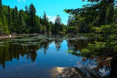 Mont-Tremblant Montreal Canada, Road Trip, River, Mountains, World, Nature, Outdoor, Photography, September