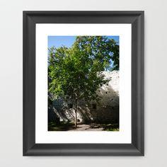 Tree inside Castle Ruin STEINHART Framed Art Print by Rainer Steinke - $40.00