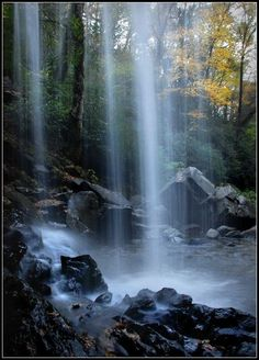 Grotto Falls - Gatlinburg, TN ; 2 mile hike and the only waterfall in the Great Smoky Mountains National Park that a person can walk behind.