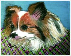Papillon Dog Art 11 x 14 Matted  Print of by SaveADogRescue, $15.00