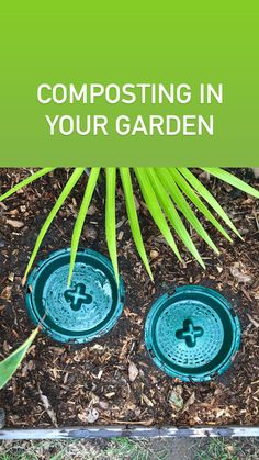 Go Eco Compost Buckets are perfect for small gardens, they compost ALL your kitchen food scraps and naturally feed nutrients out to your plants. Compost Bucket, Eco Store, School Pack, Liverpool City, Organic Soil, Small Gardens, Buckets, Kitchen, Cucina