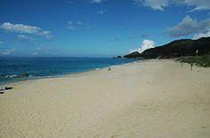 The sea of Yakushima. Looking for more information about Kagoshima? Go Visit Yakushima Marche. http://www.yakushima-marche.com/