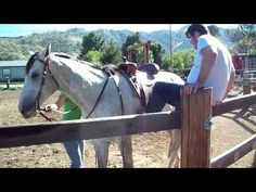How NOT To Get On The Horse - #funny #fail