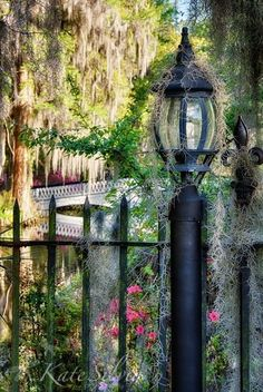 Magnolia Plantation, Charleston, South Carolina would love to visit SC Charleston Caroline Du Sud, Charleston South Carolina, Charleston Sc, The Places Youll Go, Places To See, Southern Belle, Southern Cottage, Southern Charm, Southern Living