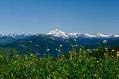 Scorpion Mt, Johnson Ridge