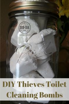 DIY toilet cleaning bombs, orange spice soft scrub and non toxic cleaner make & take recipes to DIY your own cleaners.