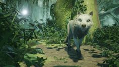 Developer Mooneye Studios released a new trailer for its upcoming game Lost…