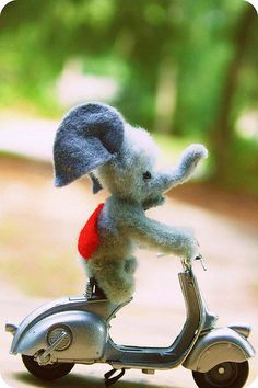 Elephant on a scooter. Omg so cute Elephant Gun, Elephant Love, Fun Crafts, Diy And Crafts, Elephant Figurines, Gentle Giant, Big Love, Craft Party, Kids Playing