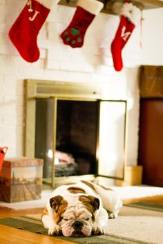The stockings were hung by the chimney with care...