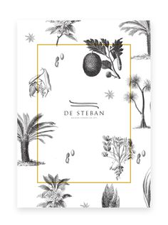 De Steban. graphic design . cover