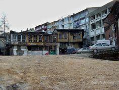 Sağrıcı Sungur ya da Şangır Şungur'un son günleri.. Ocak 2004