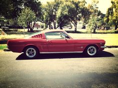 1965 Mustang Fastback - Never had one still want one