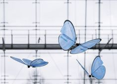 German Company Festo Creates Robotic Insects That Move Like Real Ants And Butterflies - https://technnerd.com/german-company-festo-creates-robotic-insects-that-move-like-real-ants-and-butterflies/?utm_source=PN&utm_medium=Tech+Nerd+Pinterest&utm_campaign=Social