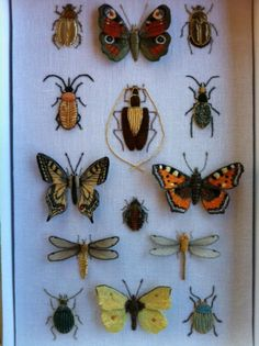 Blog fleurs de Ruban - magnifiques broderies d'insectes presentées dans une boite Deyrolles