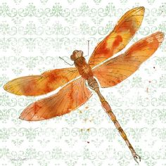 I uploaded new artwork to plout-gallery.artistwebsites.com! - 'Dragonfly Bliss-jp3437' - http://plout-gallery.artistwebsites.com/featured/dragonfly-bliss-jp3437-jean-plout.html