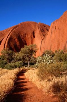 Uluru, Northern Territory, Australia-did some of the base walk with a guide. Vacation Places, Places To Travel, Places To See, Cruise Vacation, Outback Australia, Australia Travel, Australia Photos, Great Barrier Reef, Beautiful Landscapes