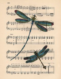 Dancing to the music Dragonflies Dictionary art by BlackBaroque