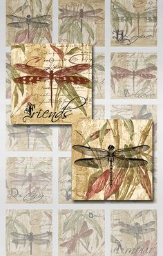 Dragonfly Bamboo Words Square Images Collage Sheet  JPEG (MA-17)
