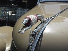 Most Awesome Hood Ornaments You've Ever Seen - Awww