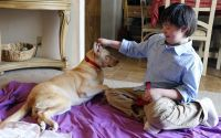 Angel, a paraplegic dog, and Adam, a boy with Down syndrome, have formed a special friendship. Adam Vasquez had never had a pet before. The fifth-grader, who is very isolated at school, has always been a little overwhelmed by dogs. But Angel has changed all that.