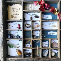 nature finds box- I like the paper notes or labels Outdoor Learning, Home Learning, Learning Spaces, Nature Activities, Toddler Activities, Weekend Activities, Montessori, Nature Collection, Environmental Education
