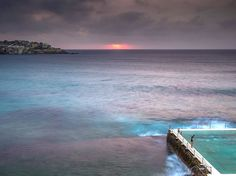 Canvas, little people, large space. Picture of swimmers at dawn on Bondi Beach, Sydney