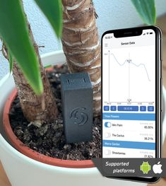Simply build a battery-powered moisture meter for your plants yourself, which will transfer the data to your Android or iOS smartphone. Water Flowers, Moisturizer, Battery Operated, Raspberry, Plants, Projects, First Aid, Tutorials, Platform