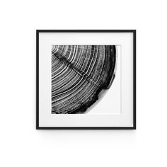 The In Time collection brings nature to the centre of attention, a mixture of the science of Dendrochronology (the science of dating the age of trees) and art sees the contrast of the tree rings an. Graphic Art, Melbourne, Digital Prints, Im Not Perfect, Room Style, Abstract, Nature, Outdoor, Living Room