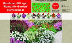 > Plants, Gardens, Houses, Inspiration, Homes, Biblical Inspiration, Flora, Garden, Plant