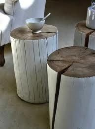 Aged tree trunks with white wash