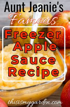 Aunt Jeanie's Famous Freezer Apple Sauce Recipe - see how easy it is to make you. Freezer Applesauce, Applesauce Recipes Easy, Apple Recipes Easy, Homemade Applesauce, Amish Recipes, Salsa Canning Recipes, Freezer Jam Recipes, Cooking Recipes, Gala Apples Recipe