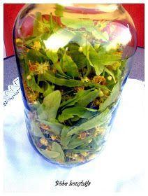Böbe konyhája: Hársfavirág szörp Torte Cake, Pickles, Cucumber, Glass Vase, Recipies, Cooking Recipes, Drinks, Health, Food