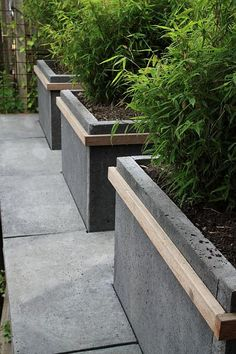 grey concrete paver/raised garden bed planted with bamboo or tiger grass