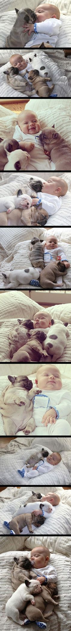 Baby and puppies - adorable :)