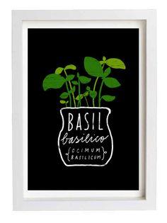 Basil Herb Mediterranean Green Kitchen Art Print  11x15  by anek, $45.00