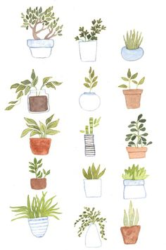 Potted Plants Art Print by Foxflowers | Society6