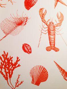 lobster wallpaper on nantucket.