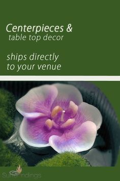 Floating unscented candles really are a another simple method include that designer's contact to actually plates, centerpieces and vases. Just include plants, mirrors beads or dyed good water. Floating Candles Wedding, Floating Candle Centerpieces, Floating Flowers, Unity Candle Holder, Blue Candles, Pillar Candles, Rose Candle, Wedding Ceremony Decorations, Orchids