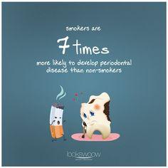 Well-off Dental Care Tips Oral Hygiene